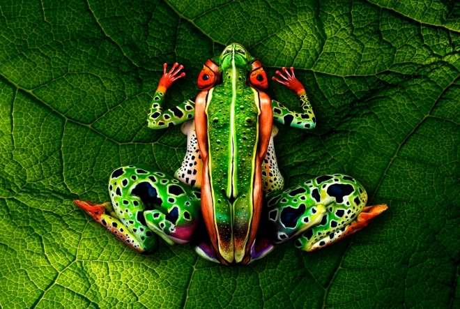 grenouille-body-painting