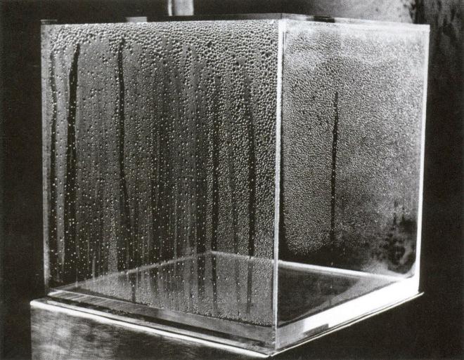 2-hans_haacke_condensation-cube_1965-2008