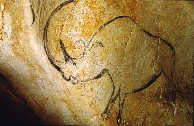 800px-Rhinoceros_grotte_Chauvet