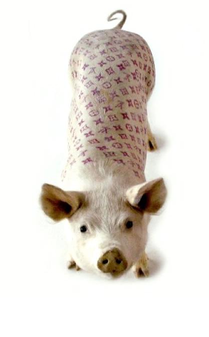 cochon-tatouage