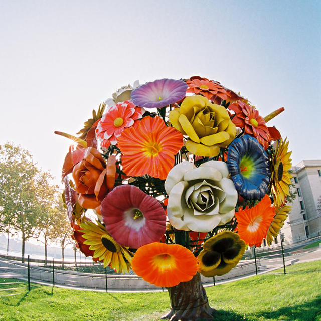 Flower-Tree_mobile_diaporama