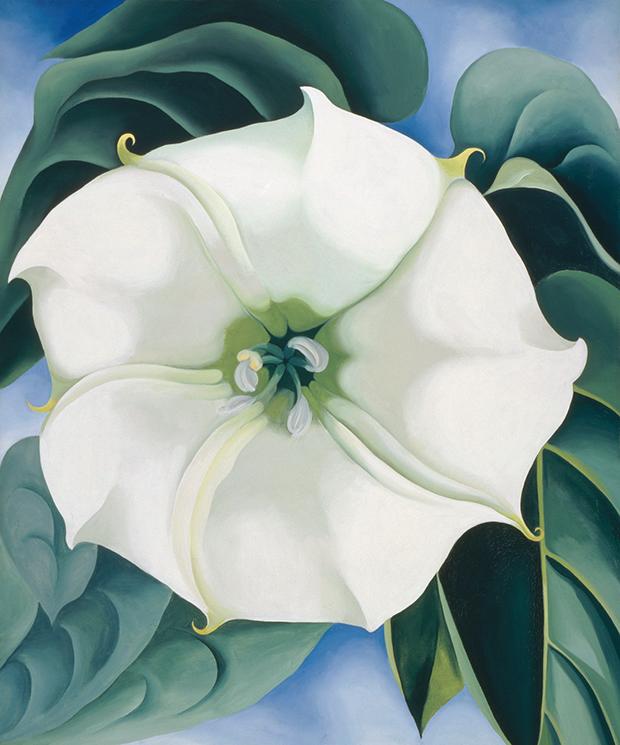 Super La flore dans l'art – Arts Plastiques PH62