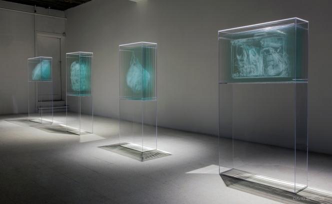 02-David-Spriggs-Transparency-Report1