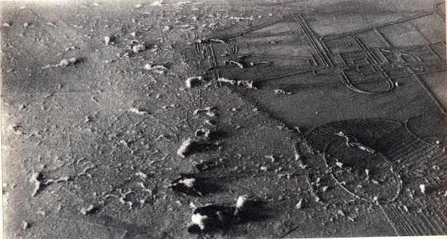 marcel-duchamp-elevage-de-poussiere-1920