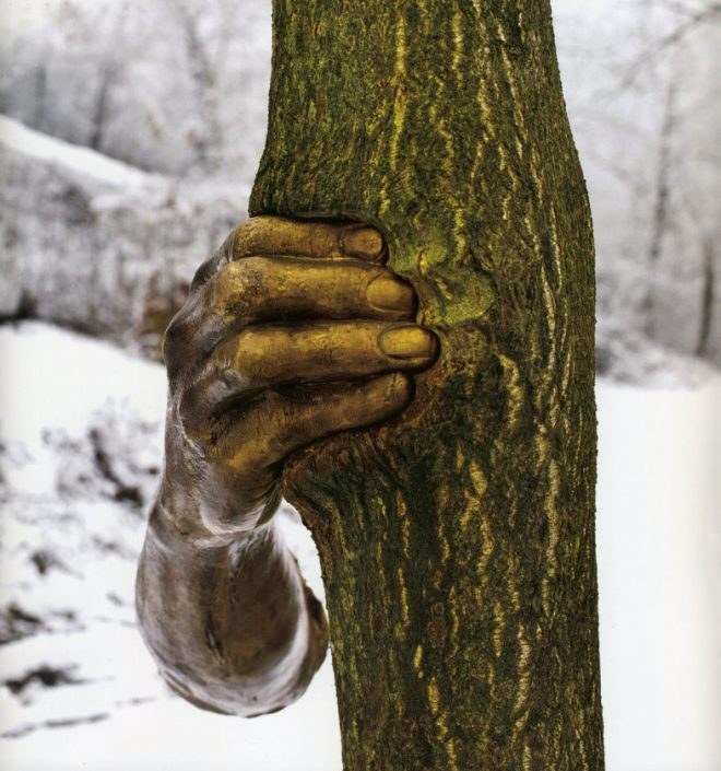 giuseppe-penone-main-arbre-04-786x840