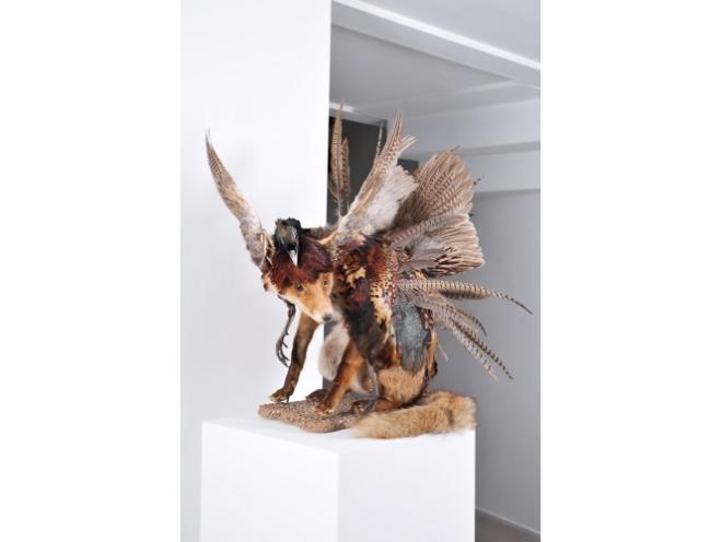 julien-salaud-metamorphic-galerie-suzanne-tarasieve-pointcontemporain-3